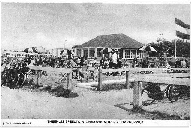 geschiedenis ouwehands dierenpark